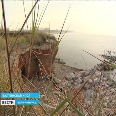 ЕС требует от Польши не начинать строительство канала через Балтийскую косу