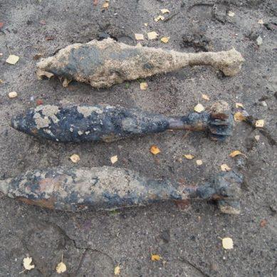 В Калининградской области нашли артиллерийские снаряды