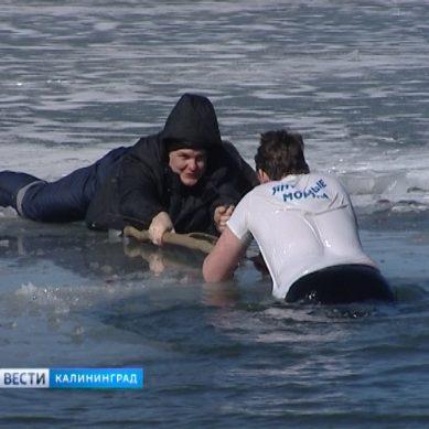В МЧС рассказали как спасти человека, провалившегося под лёд