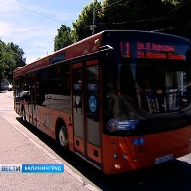 В Калининграде продлили работу общественного транспорта