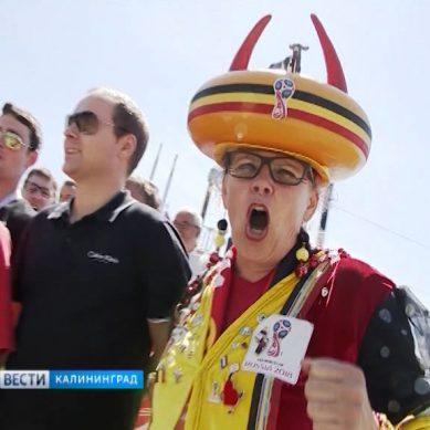 В Калининград приезжают болельщики из Англии и Бельгии