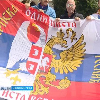 Сербские болельщики вышли на улицы Калининграда