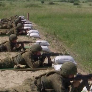 Новобранцы морской пехоты Балтфлота проводят занятия в полевых условиях