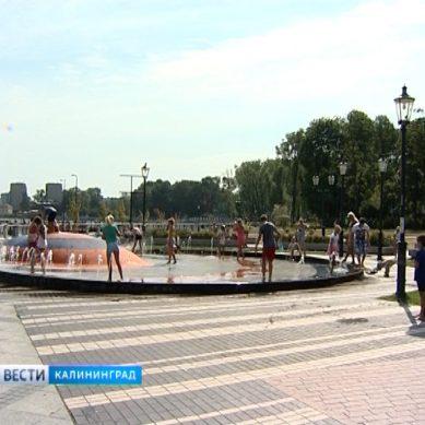 В Калининград вернулась жара