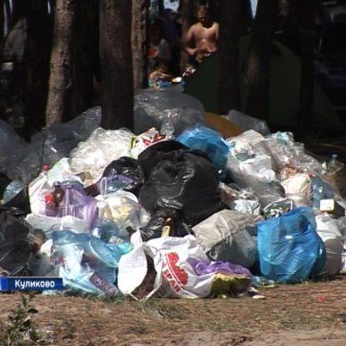 Побережье посёлка Куликово завалено мусором