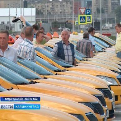 В Калининградской области хотят найти лучшего таксиста
