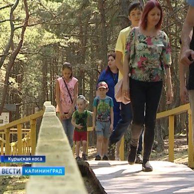 Для жителей востока области организовали экскурсию по Куршской косе