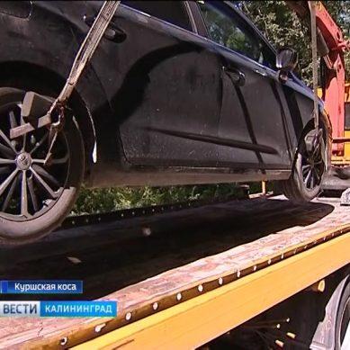 Сотрудники ГИБДД провели рейд по дорогам Куршской косы