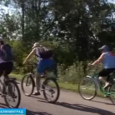 В Калининградской области реализуют несколько проектов в области велотуризма