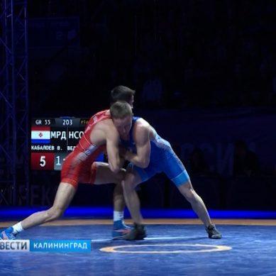 В Калининграде стартует финальный день чемпионата России по греко-римской борьбе