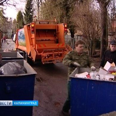 Власти Калининграда наводят порядок с уборкой мусора