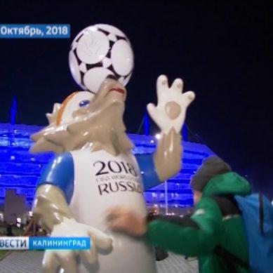 Спортивные итоги ушедшего 2018 года