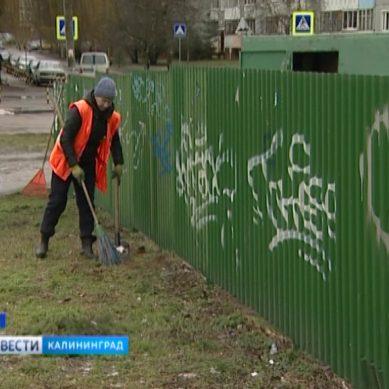 Жители Калининградской области могут сообщить о переполненном мусорном контейнере онлайн