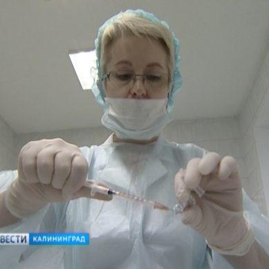 Роспотребнадзор предупреждает об активности гриппа в Европе