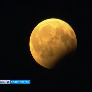 Жители Калининградской области увидят полное лунное затмение