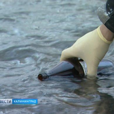 Экологи вместе с инженерами-химиками взяли на исследование воду из реки Лесная