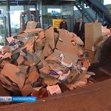 В Калининградской области построят мусорный полигон и сортировочный комплекс
