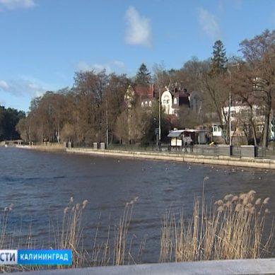 Тихое озеро в центре Светлогорска обмелело