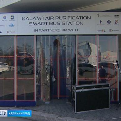 В Калининграде торжественно открыли «умную остановку», которая умеет очищать воздух
