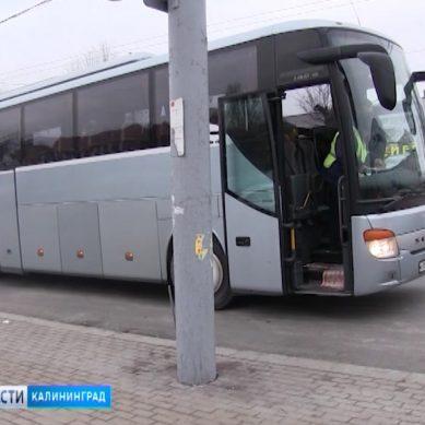 В Калининградской области лишь 43 перевозчика прошли процедуру лицензирования автобусов