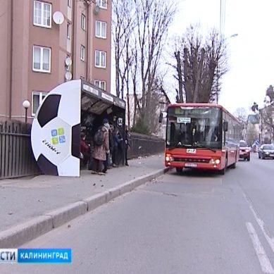 В Калининграде установят больше 20 новых остановочных павильонов