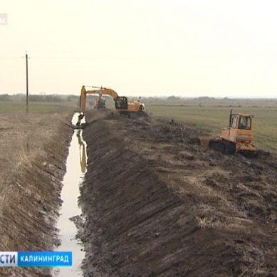 В Калининградской области создано специальное учреждение для развития мелиорации