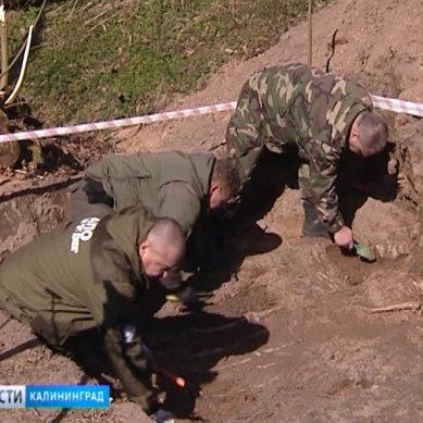 Калининградские поисковики обнаружили братскую могилу советских воинов