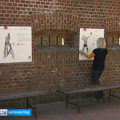 В Калининграде покажут выставку «Герои, какими их не видел никто»