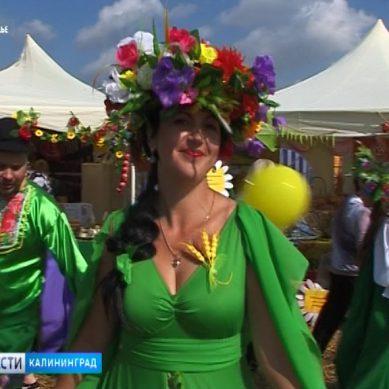 Стали известны даты проведения фестиваля «День балтийского поля»