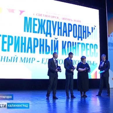 В Светлогорске проходит Международный Ветеринарный Конгресс