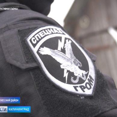 В Полесске полиция провела спецоперацию по задержанию наркоторговцев