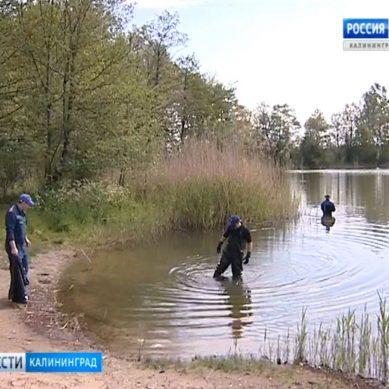 Калининградские озера готовят к купальному сезону