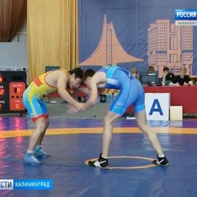 В Калининграде прошел международный турнир по вольной борьбе