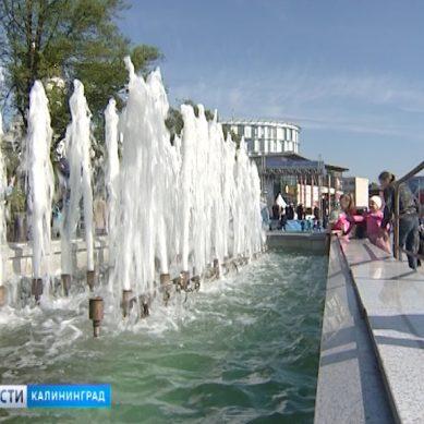 В Калининграде запустили городские фонтаны