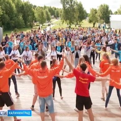 Началась регистрация на молодёжный образовательный форум «Балтийский Артек»