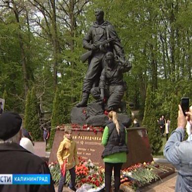 В парке Победы состоялся праздник, посвященный 74-й годовщине Великой Победы